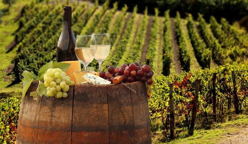 Heute trägt die intensive Arbeit an den Ländereien wieder Früchte. Die Leitung des Weinguts wurde an den international anerkannten Önologen, Adrian Graf von Hoensbroech, übergeben.