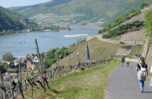 Wandern in Hessen: Naturerlebnisse mitten in Deutschland