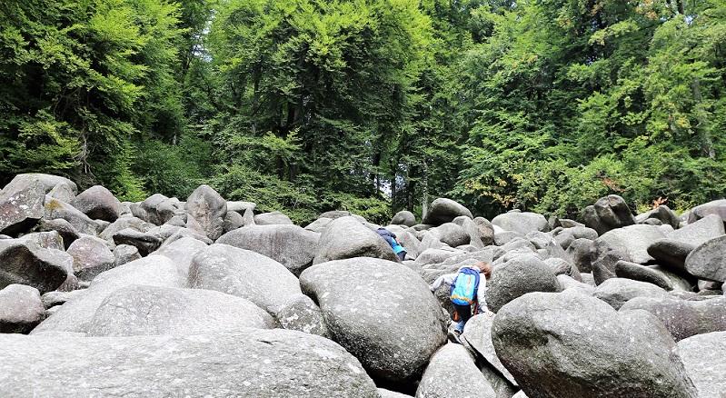 Wenn Sie noch auf der Suche nach einem faszinierenden Ziel für Ihren nächsten Urlaub in Deutschland sind, dann bietet sich hierfür der Odenwald an.