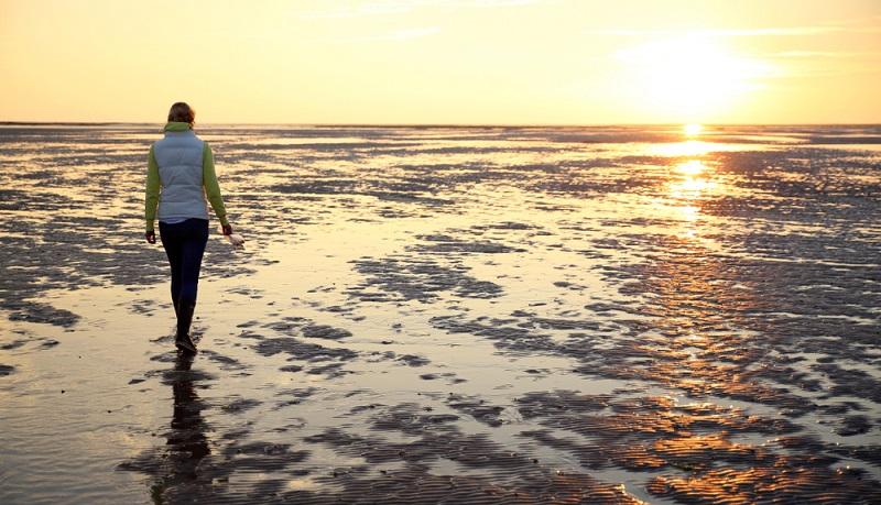 Das Wattenmeer darf in keiner Auflistung von Sehenswürdigkeiten fehlen, was auch hier in Wremen gilt. (#05)