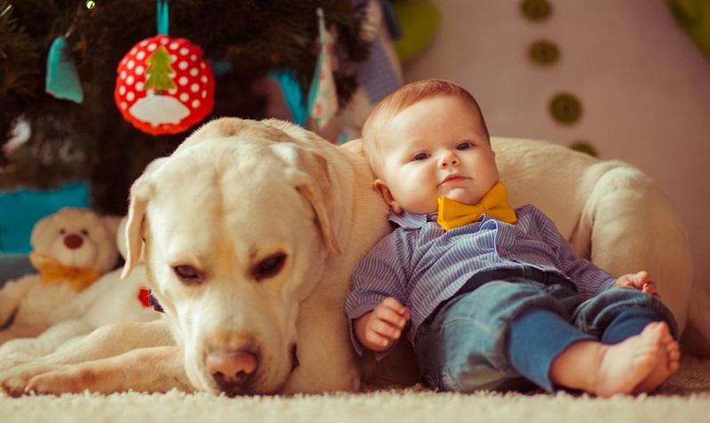 Der Urlaub mit Kind und Hund ist ein Urlaub für Fortgeschrittene: Beide haben besondere Bedürfnisse, die sich im Urlaub von denen im Alltag nicht unterscheiden. ( Foto: Shutterstock- _pyrozhenka  )
