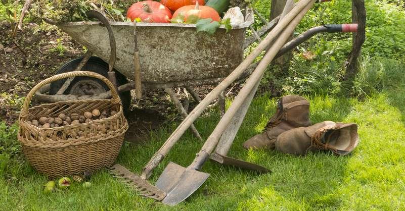 Der Pool, die Spielgeräte und der Garten muss nach der Ernte winterfest gemacht werden. ( Foto: Shutterstock -crabgarden)